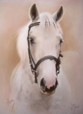 White Horse Pastel Head and Shoulders Portrait