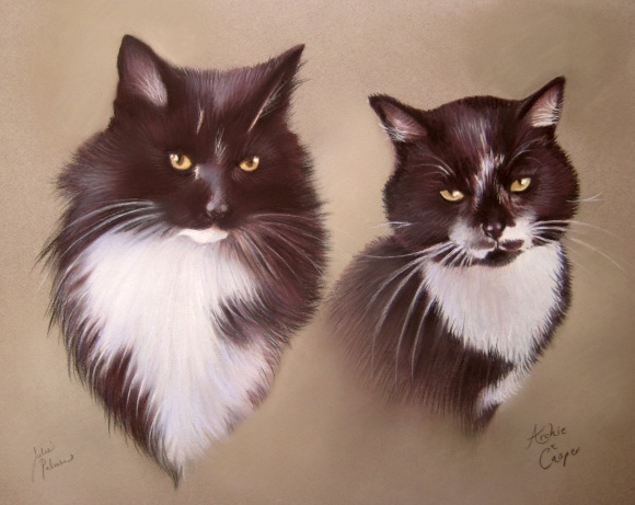 Black and White Cats Portrait