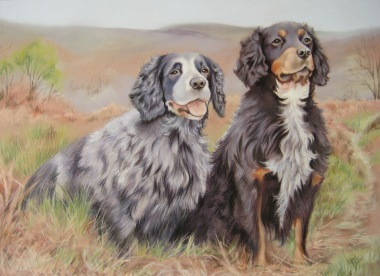 Group dog portrait