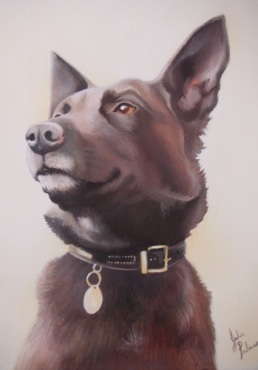 Cross Breed Dog Picture - Pet Portraits of dogs in oils from photos