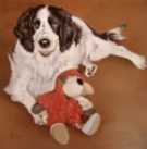 Spaniel dog with a toy