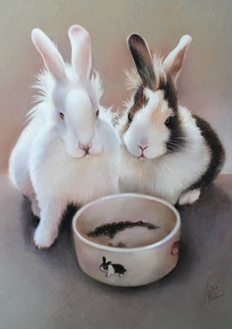 portrait of two rabbits with their feeding bowl