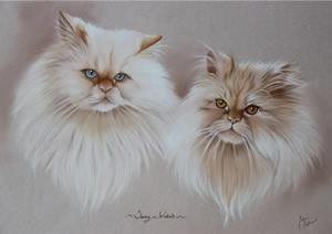 Portrait of two tabby cats