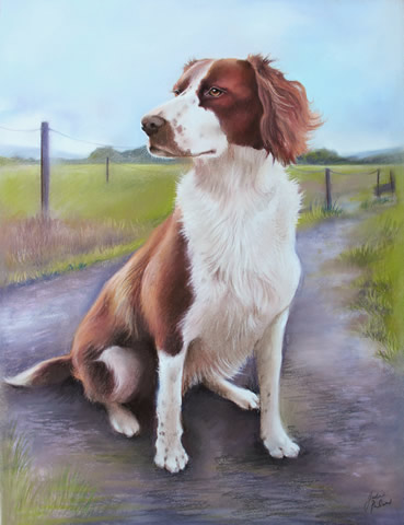 full body portrait of a spaniel in pastels