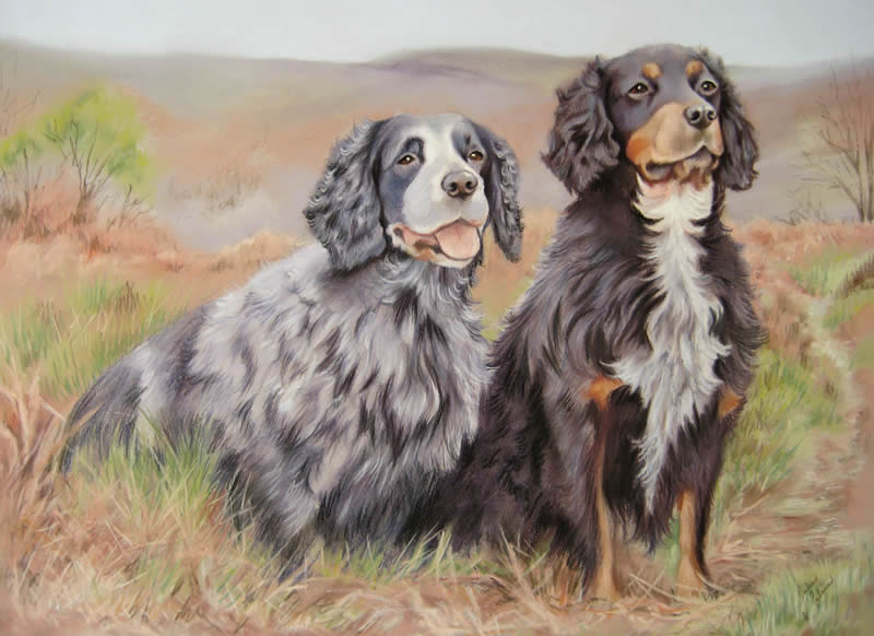 Two Cocker Spaniels in an outdoor scene