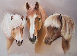 Portrait of 3 horses together